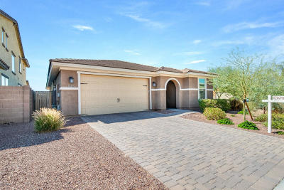 Phoenix Single Family Home For Sale: 2539 W Perola Drive