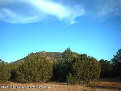 Coconino County, Yavapai County Residential Lots & Land For Sale: 198 E Riverside Drive
