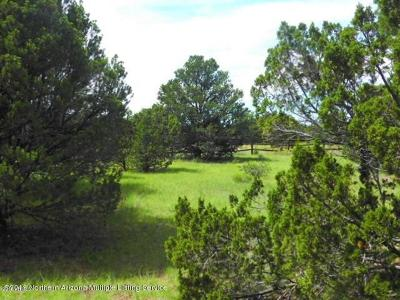 Coconino County, Yavapai County Residential Lots & Land For Sale: 224 E Riverside Drive