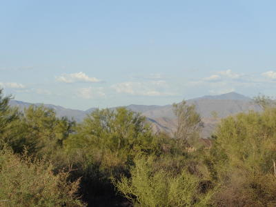 Scottsdale Residential Lots & Land For Sale: 15723 E Mark Lane