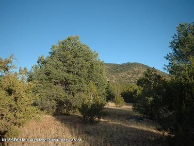 Coconino County, Yavapai County Residential Lots & Land For Sale: 256 E Riverside Drive