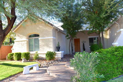 Chandler Single Family Home For Sale: 2144 E Canyon Place