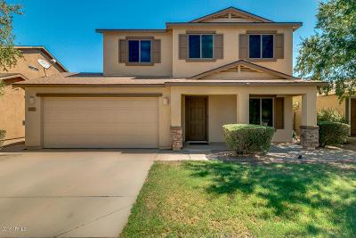 San Tan Valley Single Family Home For Sale: 40627 N Glen Meadows Lane