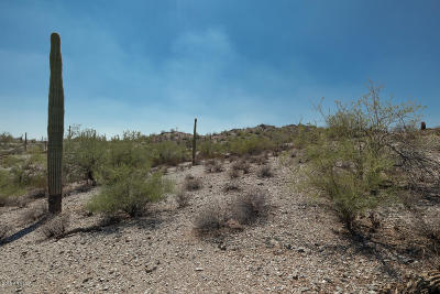 Queen Creek Residential Lots & Land For Sale: N Homestead
