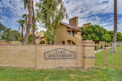 Tempe Apartment For Sale: 4901 S Calle Los Cerros Drive #271