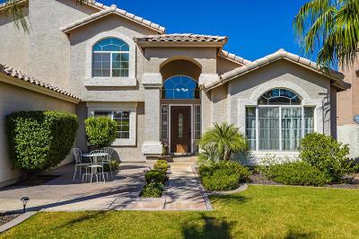 Mesa Single Family Home For Sale: 3430 E Contessa Circle