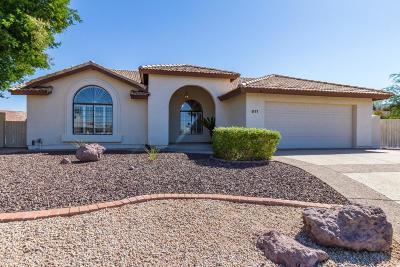 Phoenix Single Family Home For Sale: 911 E Sandra Terrace
