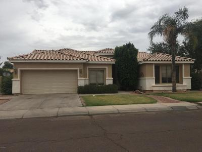 Chandler Single Family Home For Sale: 1810 W Falcon Drive