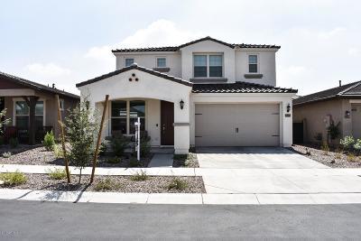 Mesa Single Family Home For Sale: 10549 E Sebring Avenue