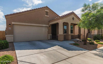 Phoenix Single Family Home For Sale: 13023 N 34th Way