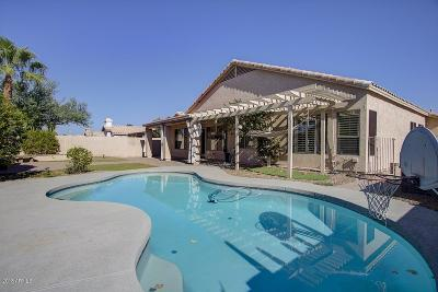 Chandler Single Family Home For Sale: 1790 W Hawk Way