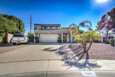 Tempe Single Family Home For Sale: 1601 E Diamond Drive