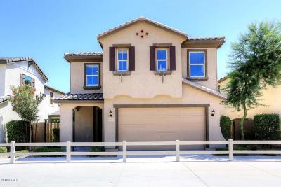 Goodyear AZ Single Family Home For Sale: $255,990