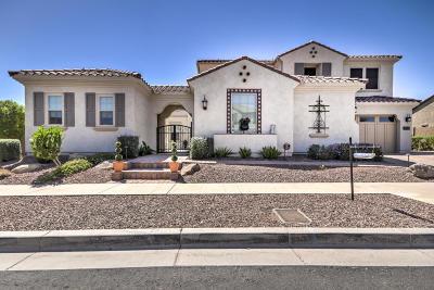 Phoenix Single Family Home For Sale: 3015 E Branham Lane