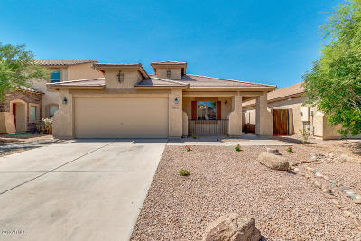 Maricopa Single Family Home For Sale: 43309 W Blazen Trail
