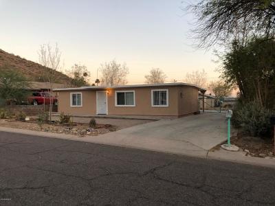 Phoenix Single Family Home For Sale: 1421 W Desert Cove Avenue