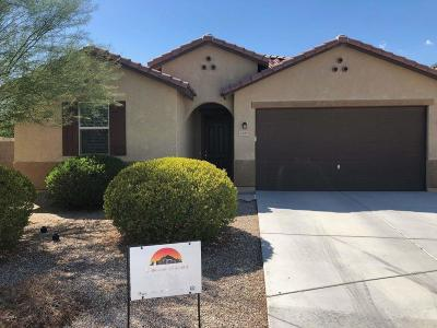 Goodyear Single Family Home For Sale: 2680 S 171st Lane