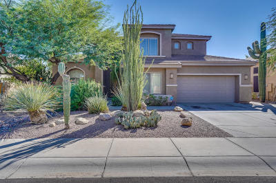 Chandler AZ Single Family Home For Sale: $485,000