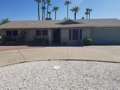 Glendale Single Family Home For Sale: 4539 W Orangewood Avenue