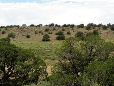 Overgaard Residential Lots & Land For Sale: Lot 107 Chevelon Canyon Ranch