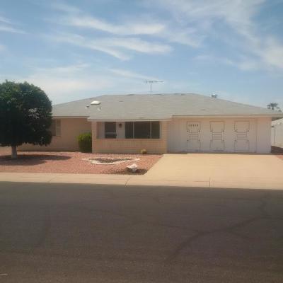 Sun City Rental For Rent: 19614 N Pine Springs Drive
