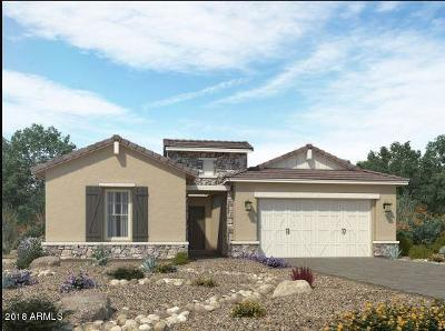 Mesa Single Family Home For Sale: 5253 S Axiom