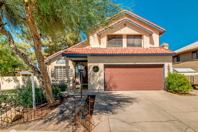 Gilbert Single Family Home For Sale: 562 W Spur Avenue