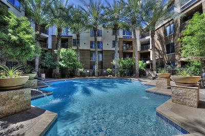 Phoenix Rental For Rent: 1701 E Colter Street #313