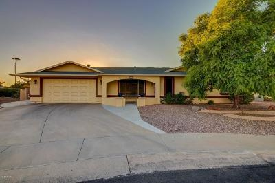 Sun City West Single Family Home Pending: 13214 W Hyacinth Drive