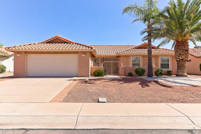 Mesa Single Family Home For Sale: 2484 Leisure World