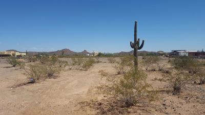 Residential Lots & Land For Sale: 28319 N 151st Avenue