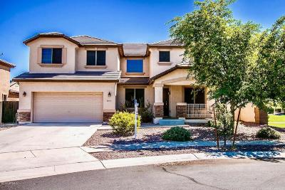 Gilbert Single Family Home For Sale: 5985 S Inez Drive