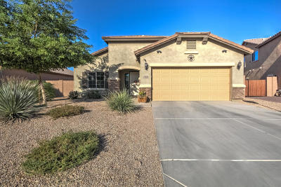 Mesa Single Family Home For Sale: 5017 S Parkwood