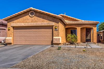 San Tan Valley Single Family Home For Sale: 270 E Shawnee Road