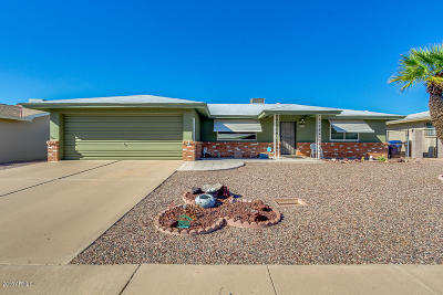 Mesa Single Family Home For Sale: 4652 E Dolphin Avenue