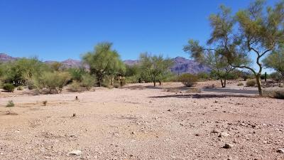 Residential Lots & Land For Sale: 3828 S Gambel Quail Way