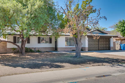 Phoenix Single Family Home For Sale: 1719 W Loma Lane