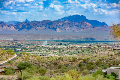 Fountain Hills Residential Lots & Land For Sale: 14133 E Paloma Court