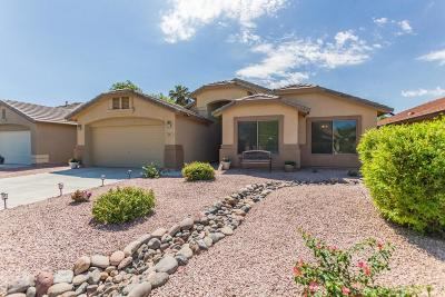 San Tan Valley Single Family Home For Sale: 463 E Clairidge Drive