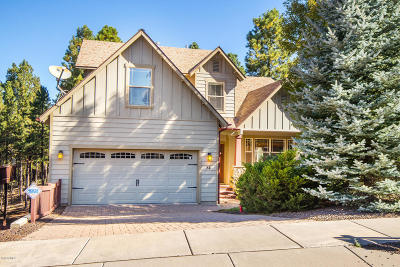 Flagstaff Single Family Home For Sale: 54 W Gneiss Trail