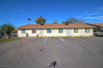 Phoenix Multi Family Home For Sale: 1001 32nd Avenue