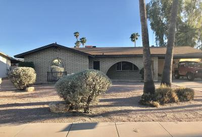 Mesa AZ Single Family Home For Sale: $299,000