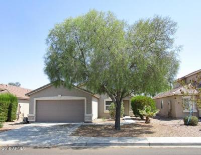 Single Family Home For Sale: 22775 W Mohave Street