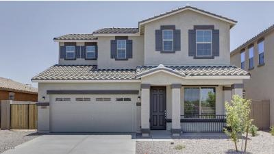 Single Family Home For Sale: 1597 W Desert Spring Way