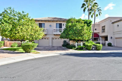 Chandler, Fountain Hills, Gilbert, Mesa, Paradise Valley, Queen Creek, Scottsdale, Gold Canyon, San Tan Valley Single Family Home For Sale: 10158 E Topaz Drive