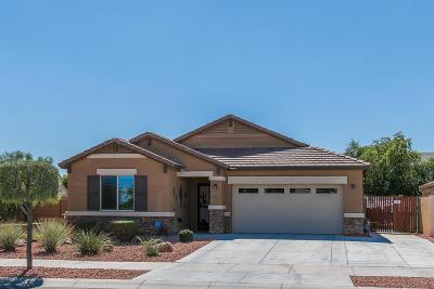 Surprise Single Family Home For Sale: 17515 W Eugene Terrace