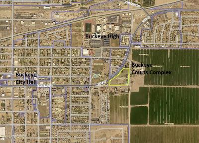 Buckeye Residential Lots & Land For Sale: 1010 E Monroe Avenue