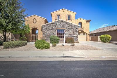 Chandler Single Family Home For Sale: 2600 E Wisteria Drive