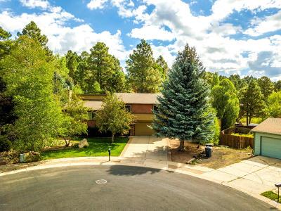 Flagstaff Single Family Home For Sale: 3819 E Mallard Lane