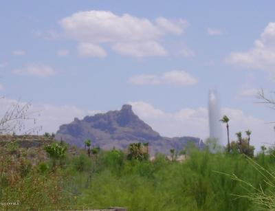 Fountain Hills AZ Residential Lots & Land For Sale: $130,000
